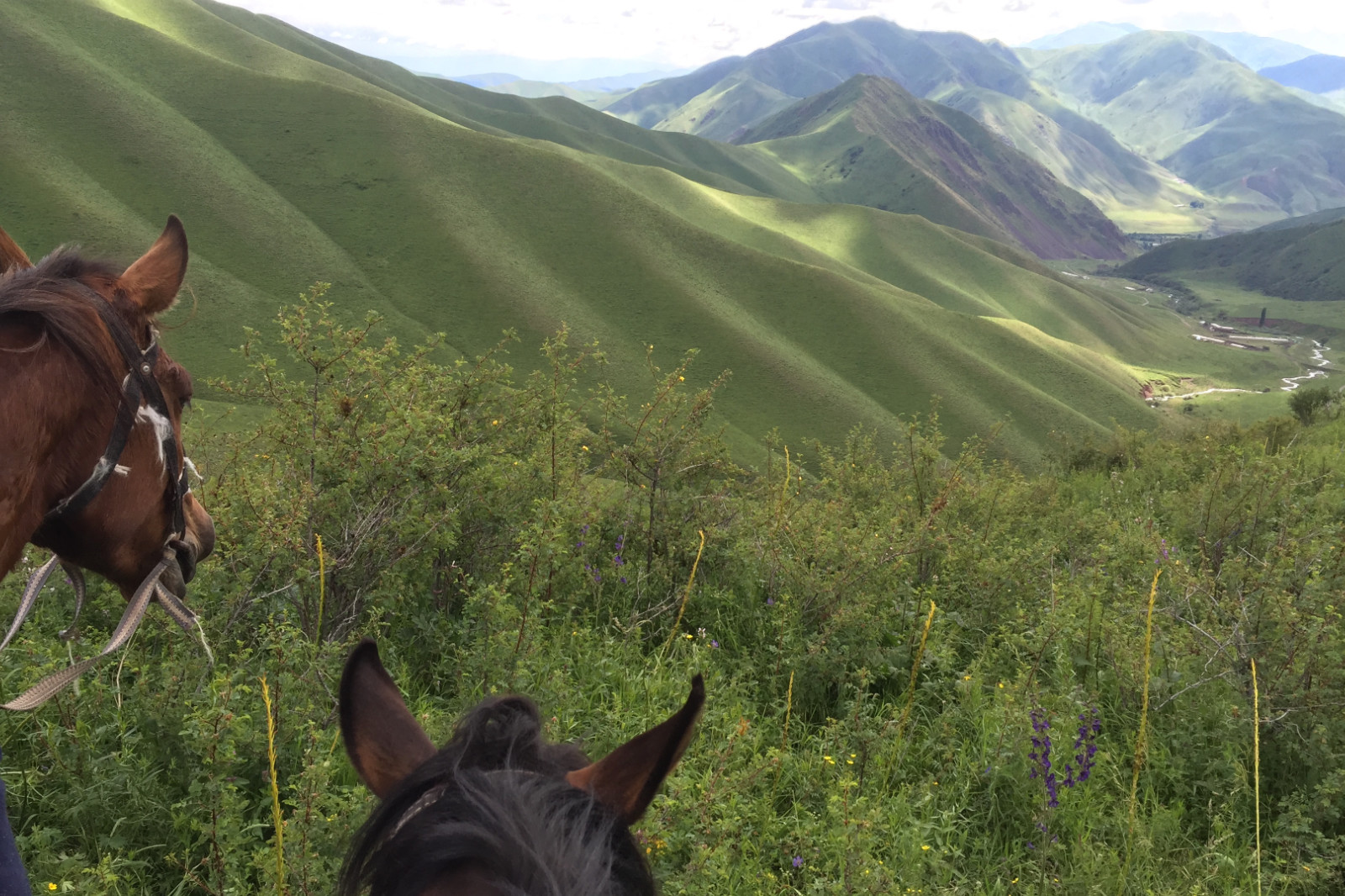 Kirghizistan rencontres